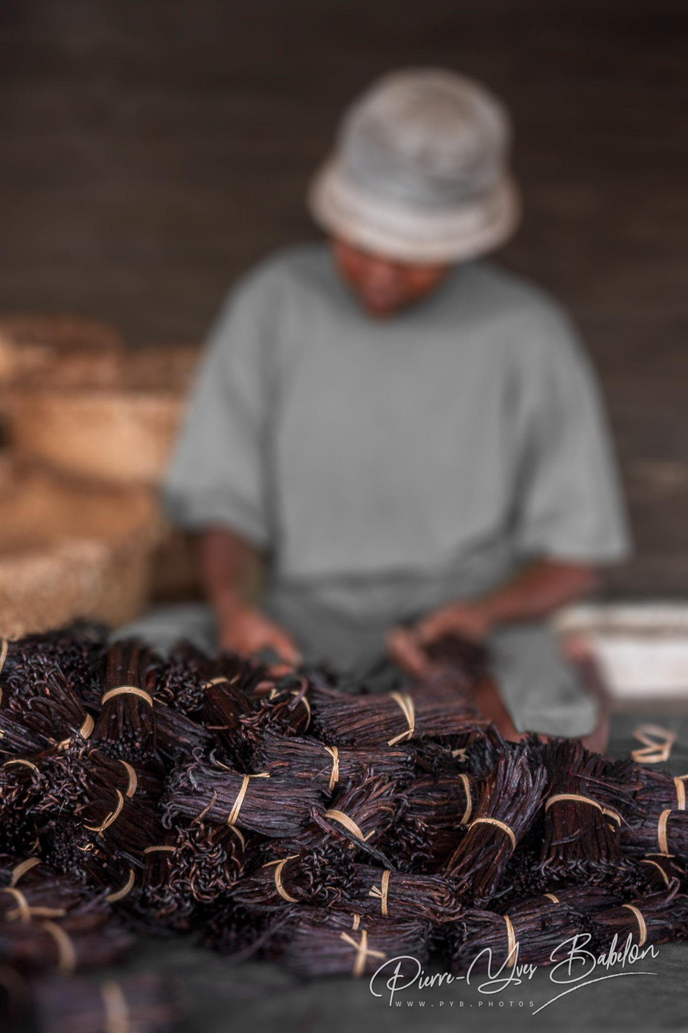 Preparation of vanilla