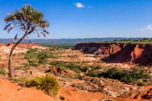 Le canyon des Tsingy rouges d'Antsiranana (Diego Suarez), Madagascar