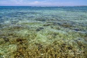 Fonds marins de la mer émeraude de la baie de Diego Suarez, nord de Madagascar