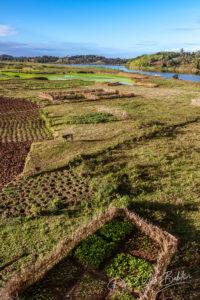 Agriculture dans la campagne de l'est de Madagascar
