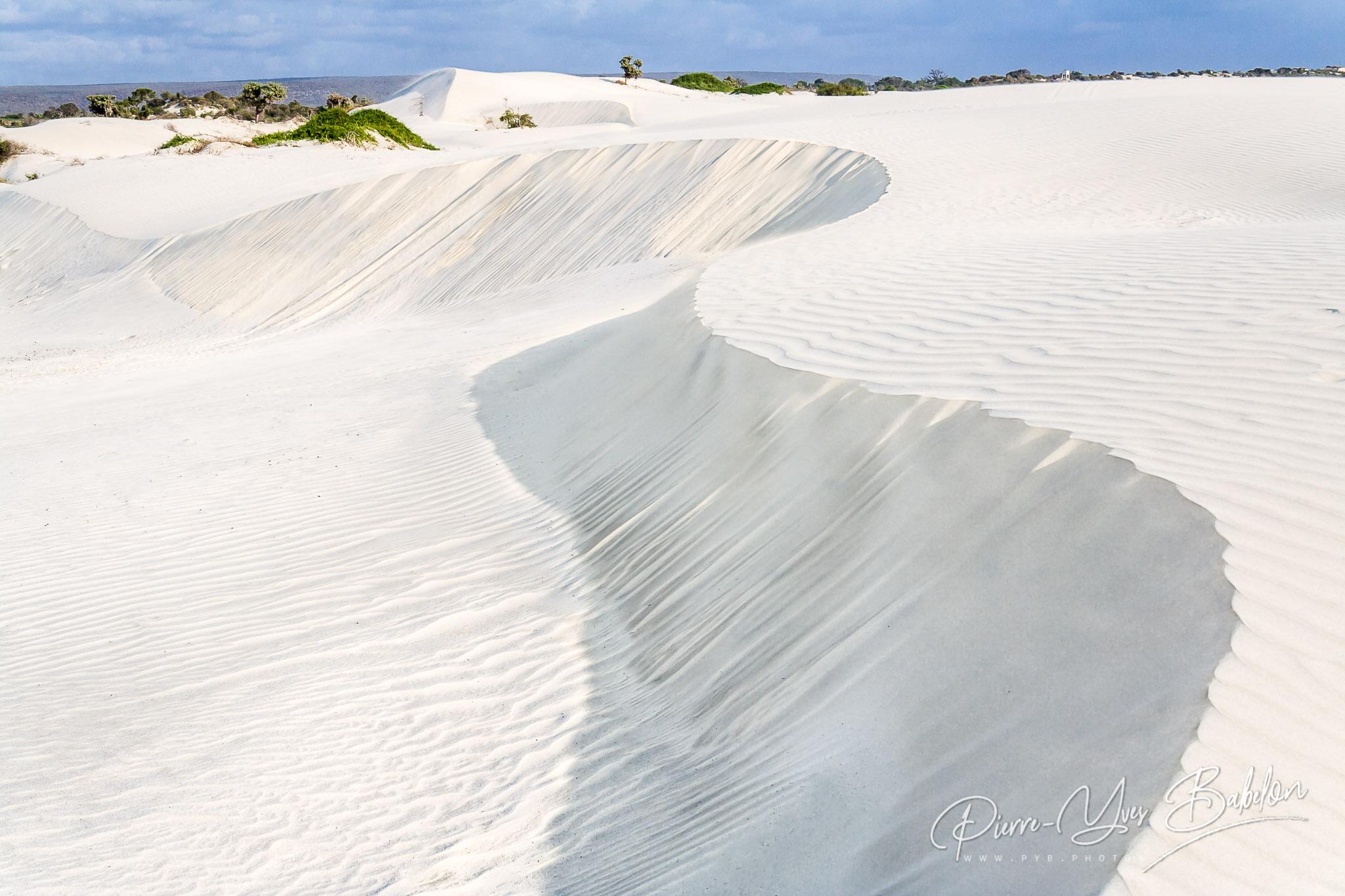 Dune on a wild beach