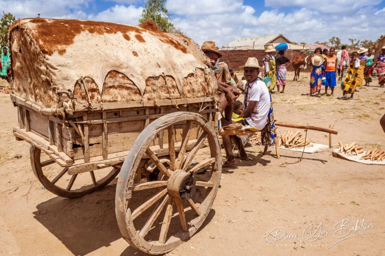 Malagasy cassava seller