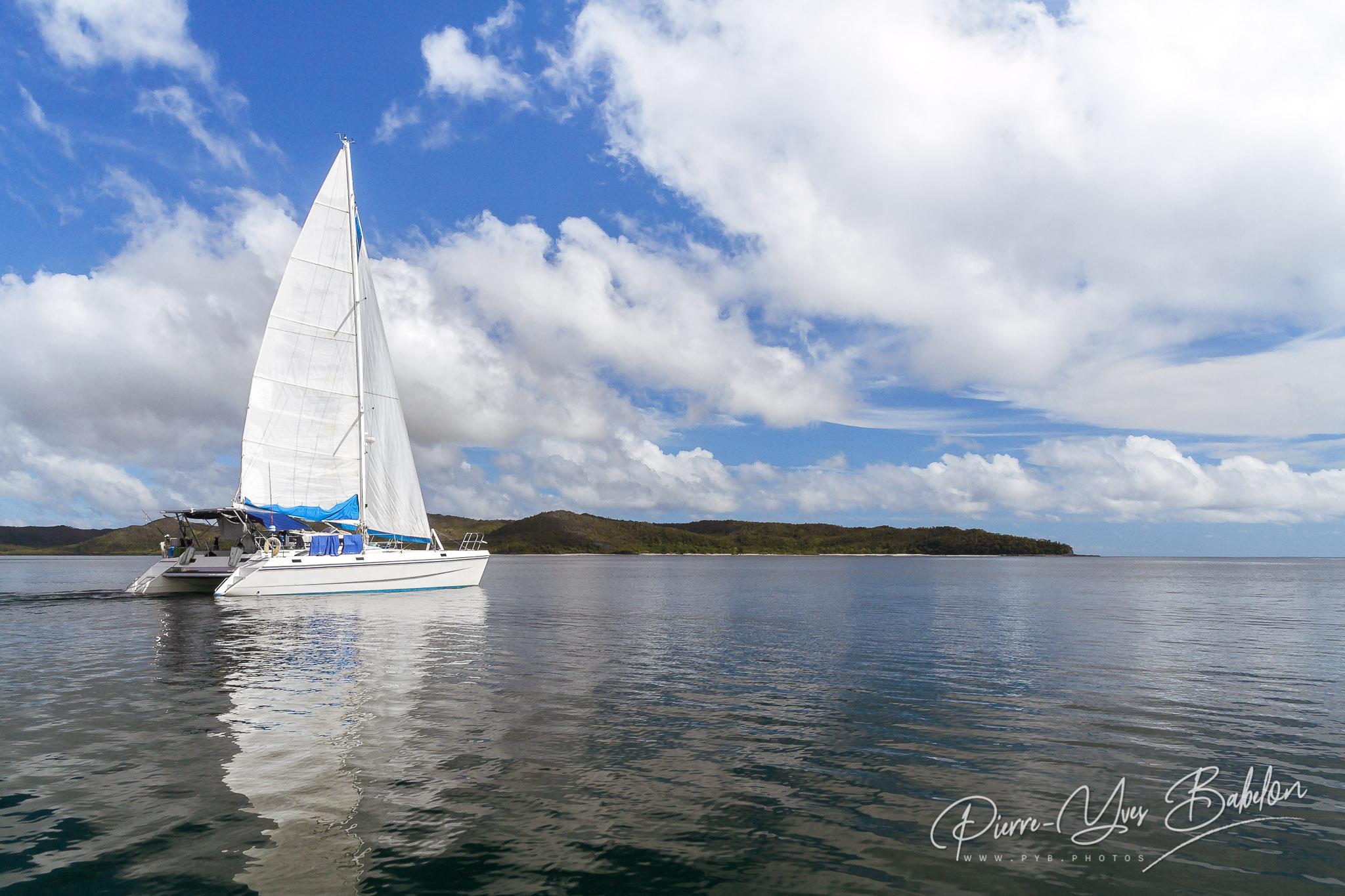 Luxury catamaran in the bay