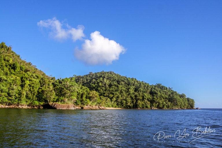 La forêt de Masoala, Madagascar