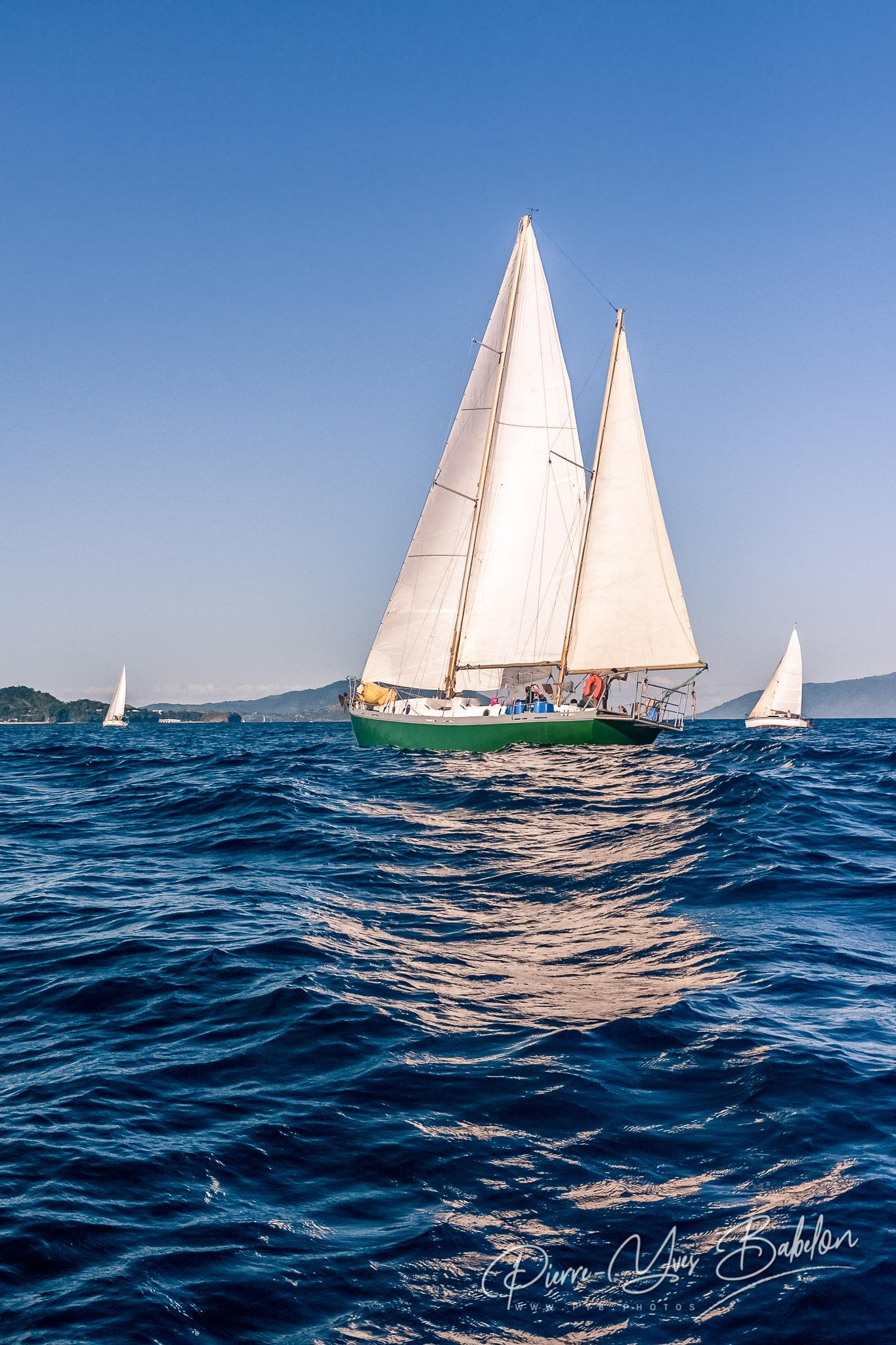 Sailboats race