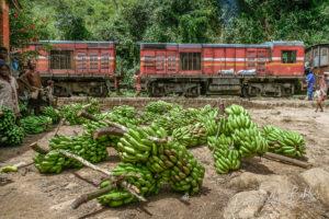 Chargement des bananes dans le train Fianarantsoa - Côte Est (FCE), Madagascar