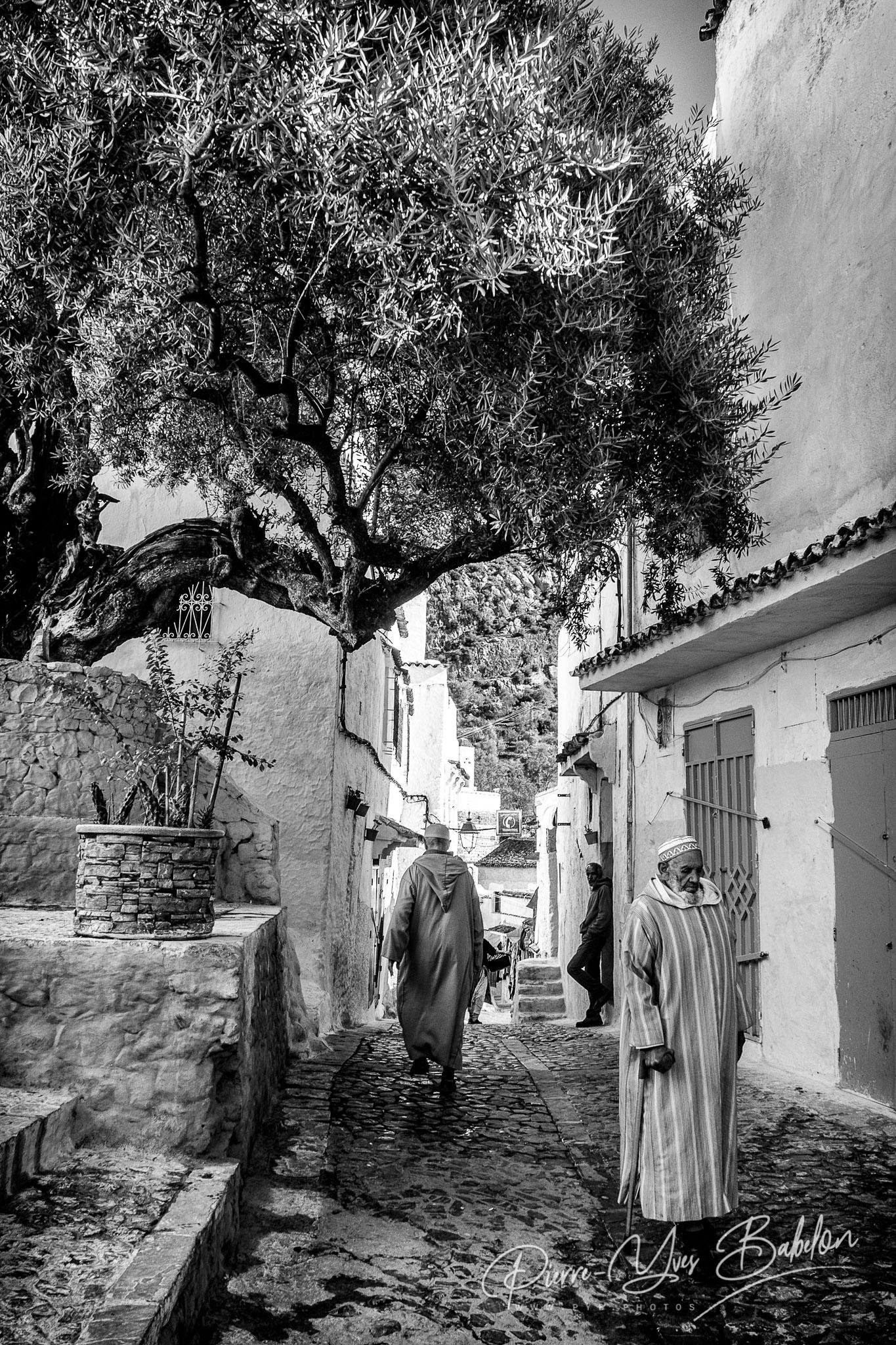 Scène de rue à ChefchScène de rue sous l'olivier à Chefchaouen, Marocaouen, Maroc