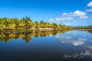 Réflexion sur la palmeraie dans la rivière de Maroantsetra, à l'est de Madagascar