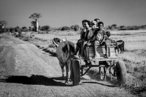 Villageois malgaches dans leur charrette à zébu près de Morombe, Madagascar