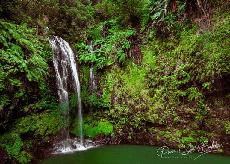 The sacred falls