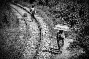 Along the railLe long de la ligne ferroviaire du train Fianarantsoa - Côte Est, Madagascar