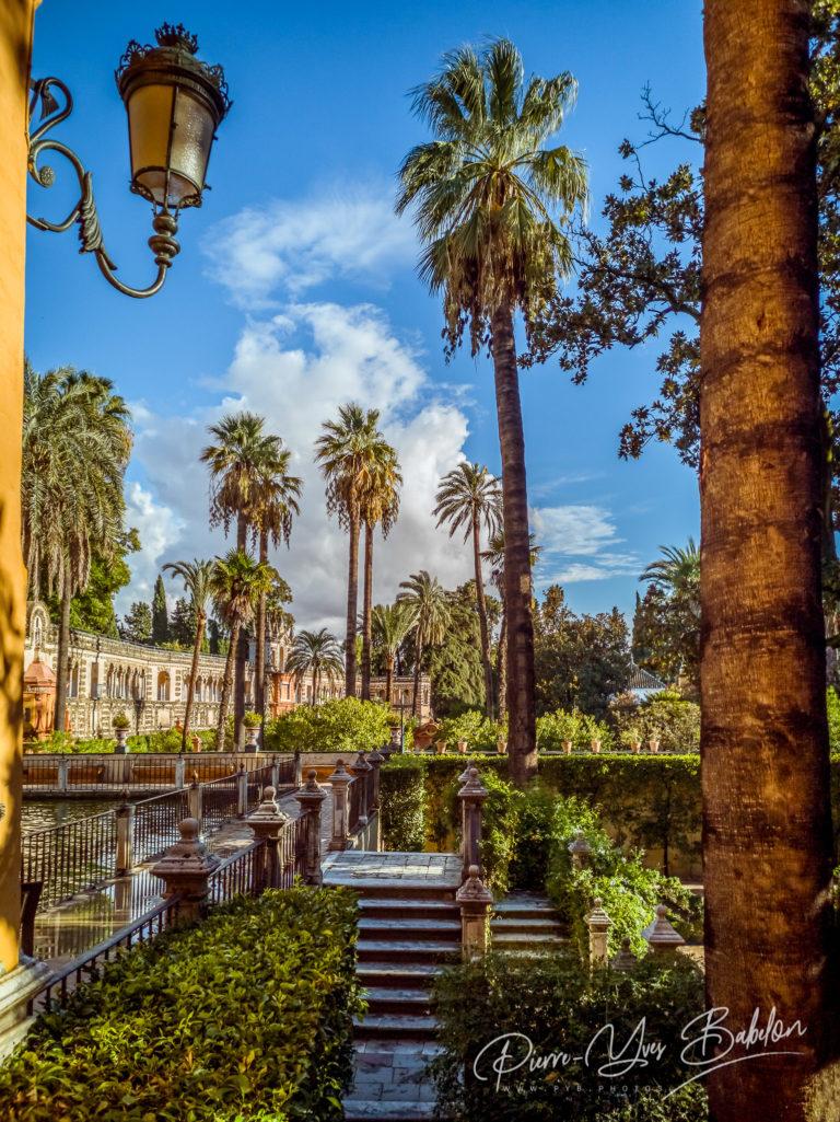 Les jardins du Royal Alcazar de Seville, Espagne
